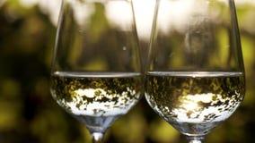 Sluit omhoog van twee glazen witte wijn onder zonlicht stock videobeelden