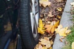 Sluit omhoog van van de autowiel en herfst bladeren Royalty-vrije Stock Foto