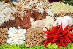Sluit omhoog van veel soort paddestoel voor voedselingredi Royalty-vrije Stock Foto's