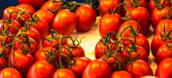Sluit omhoog van verse organische tomaten bij openluchtmarkt Stock Afbeeldingen