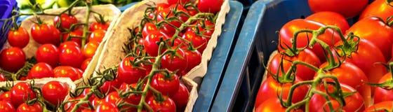 Sluit omhoog van verse organische tomaten bij openluchtmarkt Stock Foto's