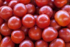 Sluit omhoog van verse organische tomaten bij openluchtmarkt Stock Fotografie