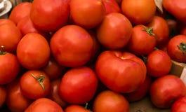 Sluit omhoog van verse organische tomaten bij openluchtmarkt Heerlijke rode tomaten Van de de marktlandbouw van het de zomerdienb Royalty-vrije Stock Foto's