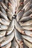 Sluit omhoog van vissen op vertoning in een vissenmarkt Royalty-vrije Stock Fotografie
