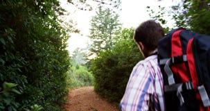 Sluit omhoog van wandelaar het lopen stock videobeelden