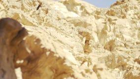 Sluit omhoog van woestijncanion Het Park van Timna, Israël stock video
