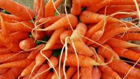 Sluit omhoog van wortel Stock Foto's