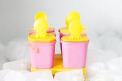 Sluit omhoog van zes eigengemaakt roomijs in koelkast met ijsblokken Royalty-vrije Stock Foto
