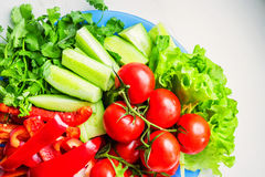Sluit omhoog verse groenten voor salade royalty-vrije stock fotografie