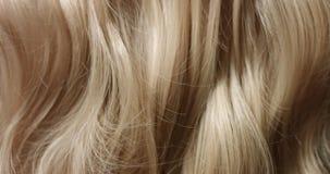 Sluit omhoog video of vrouwen` s blond haar stock footage