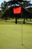 Sluit omhoog Vlag op Green Stock Afbeeldingen