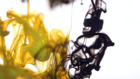 Sluit omhoog voor gele en bruine die de inktdalingen van de kleurenverf in water in langzame motie op witte achtergrond worden ge stock video
