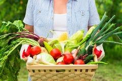 Sluit omhoog Vrouw die handschoenen met verse groenten in doos i dragen royalty-vrije stock afbeeldingen