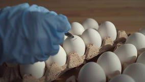 Sluit omhoog vrouwelijke hand houdend een teller het ongeschikte kippenei merkt stock footage