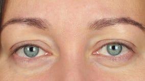 Sluit omhoog vrouwelijke ogen die en camera knipperen onderzoeken Volwassen vrouw het knipogen oog stock video