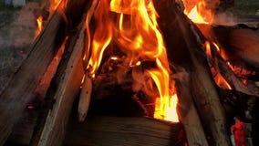Sluit omhoog vuurvlammen van het kamperen brand, Super langzaam motie brandend brandhout stock footage