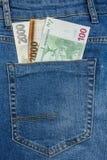 Sluit omhoog Weergeven aan Euro, Dollar, Kroon, Forintbankbiljetten die uit van een Jeanszak plakken stock foto's