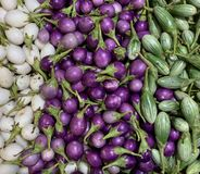 Sluit omhoog witte, purpere en groene auberginevertoning stock foto's