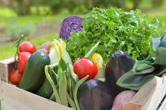 Sluit op verse en kleurrijke groenten in een krat stock foto