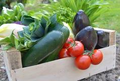 Sluit op verse en kleurrijke groenten in een krat stock afbeelding