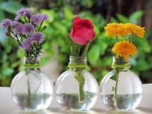 Sluit Roze rozen, omhoog gele chrysant en purpere aster in flessenvazen op wit met groene aardachtergrond stock afbeeldingen