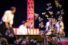 Sluit Sakura With Kendo Practice In omhoog Vage Achtergrond stock foto