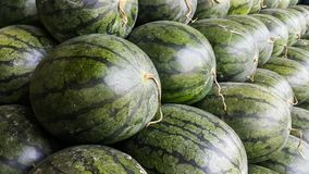 Sluit tot de watermeloen Royalty-vrije Stock Afbeelding