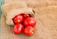 Sluit Verse rode tomaat grunged omhoog zakachtergrond Stock Foto's