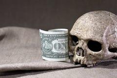 Slull And Dollar Stock Image