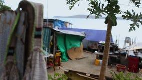 Slummy wioska rybacka w Papua - nowa gwinea zdjęcie wideo