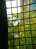 Slumpmässig pic för enkel gallersvartfärg arkivbild