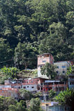 Slums. Illegal slums in atlantic forest, sao paulo, brazil Royalty Free Stock Photography
