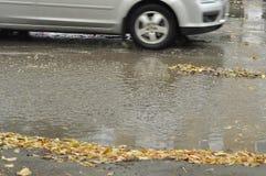 Slush φθινοπώρου Στοκ Εικόνα