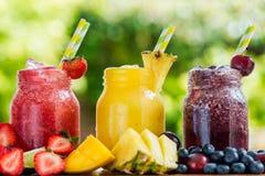 3 slushies deliziosi dalle bacche differenti e dai frutti Fotografia Stock Libera da Diritti