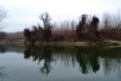 Slut av Januari på Donauen 2 Arkivfoto