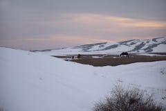 Slut av vintern på foothillen av Alun-tau, Royaltyfria Foton
