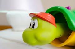 Slut för begrepp för utveckling för bildande leksak för sköldpadda tidigt upp royaltyfria bilder