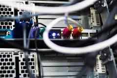 Slut för LAN för nätverksnavkabel upp Arkivbild