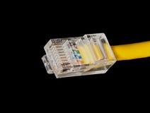 Slut för LAN-kabel upp Fotografering för Bildbyråer