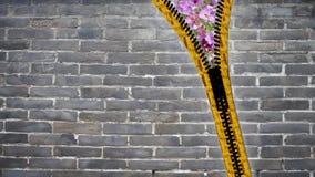 slut för tolkning 3d upp blixtlåstextur på isolerad bakgrund med Royaltyfri Bild