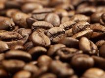 Slut för bakgrund för kaffebönor upp Royaltyfri Fotografi