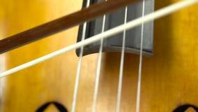 Slut upp att spela för violoncell stock video