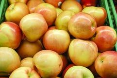 Slut upp av äpplen Royaltyfri Foto
