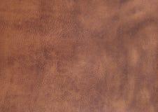 Slut upp av bakgrund med brun efterföljdhud Royaltyfri Foto
