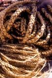 Slut upp av baksidan av en kvinnas huvud av ljus - brun flätad tråd för färg Arkivfoto