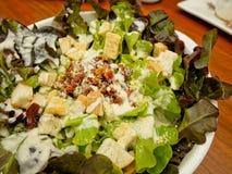 Slut upp av Caesar Salad Fotografering för Bildbyråer