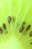 Slut upp av den gröna smakliga kiwien Royaltyfri Fotografi