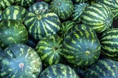 Slut upp av den gröna vattenmelon Arkivfoto