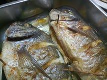 Slut upp av den lagade mat och kryddade fisken Arkivbild