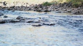 Slut upp av den rena floden stock video